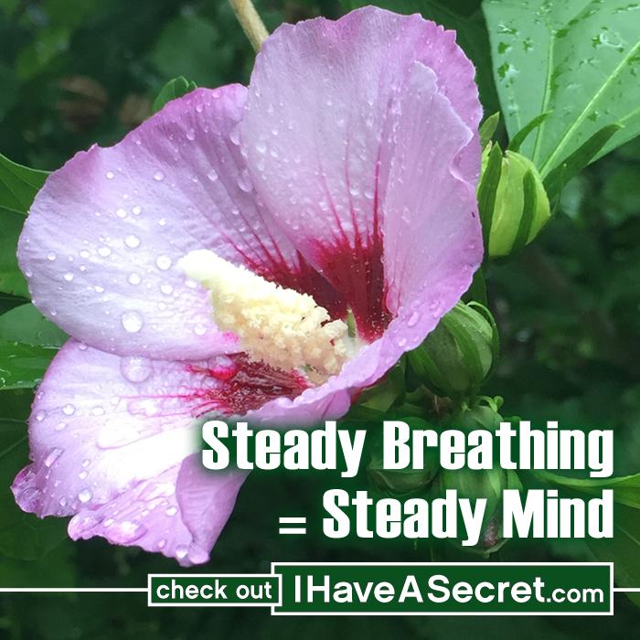 IHaveASecret-SteadyBreathing.jpg